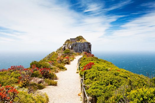 Cape Point Nature Reserve, Cape Town, South Africa